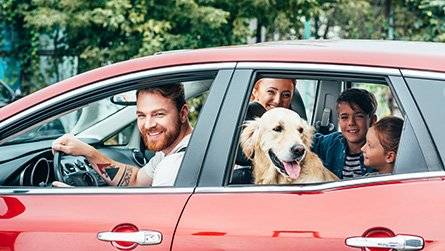 beautiful young family traveling by car with dog
